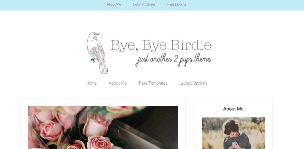 Birdie – 3rd Party Genesis Framework Theme
