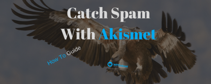 Catch Spam With Akismets