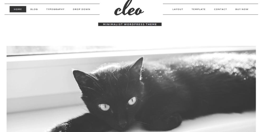 Cleo – 3rd Party Genesis Framework Theme