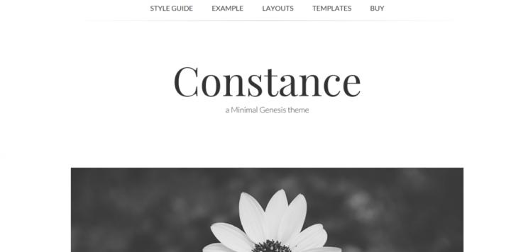 Constance – 3rd Party Genesis Framework Theme