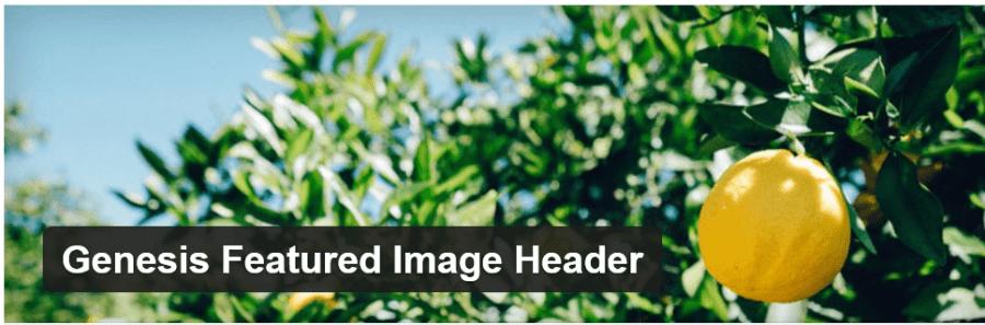 Genesis Featured Image Header
