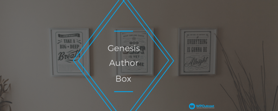 How To Set Up The Genesis Framework Author Box