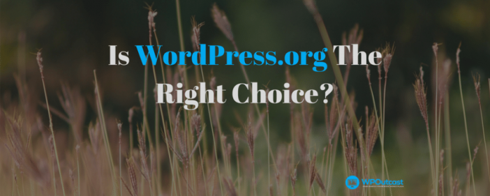 Is WordPress.org The Right Choices