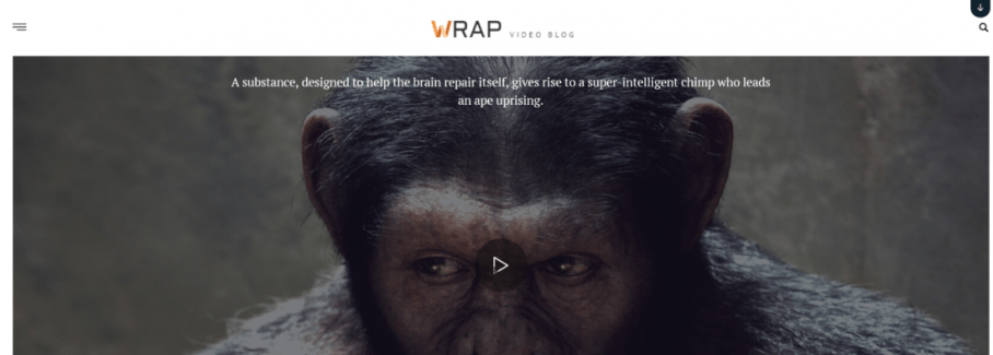 It is a Wrap – A True Video WordPress Theme
