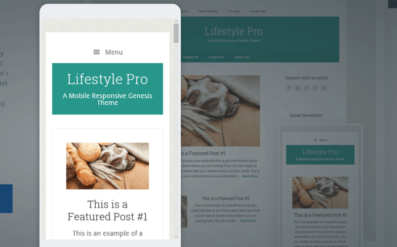 LifeStyle Pro Mobile View