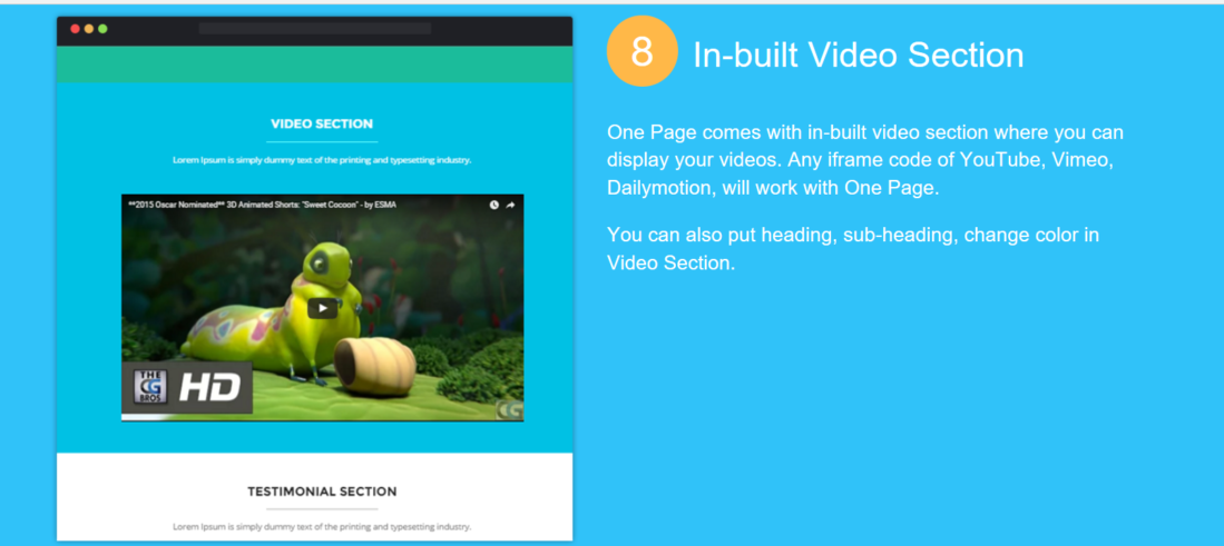 OnePage Video Section