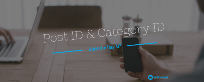 Post ID & Category IDs