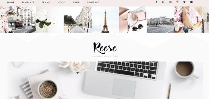 Reese – 3rd Party Genesis Framework Theme
