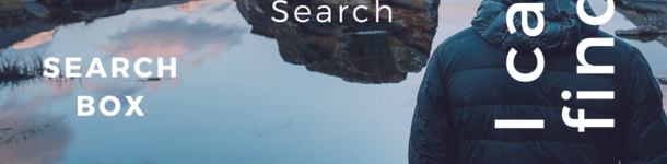 Should You Add A Search Box On Your Blog