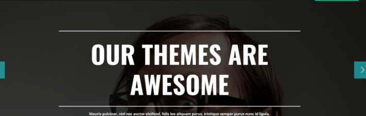 Single – 3rd Party Genesis Framework Theme