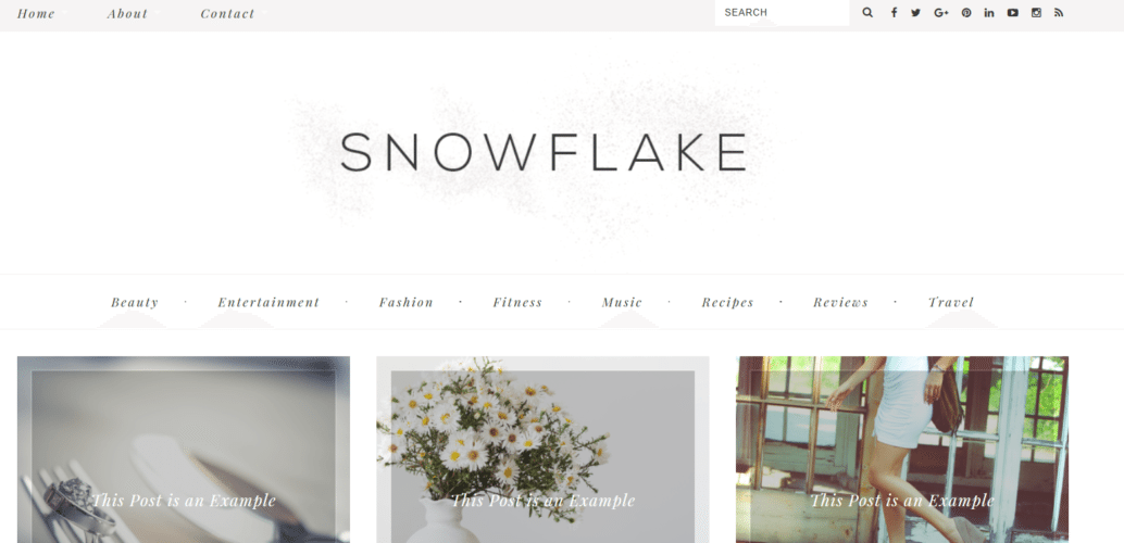 Snow Flake – 3rd Party Genesis Framework Theme