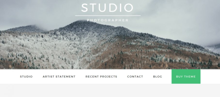 Studio Pro – 3rd Party Genesis Framework Theme