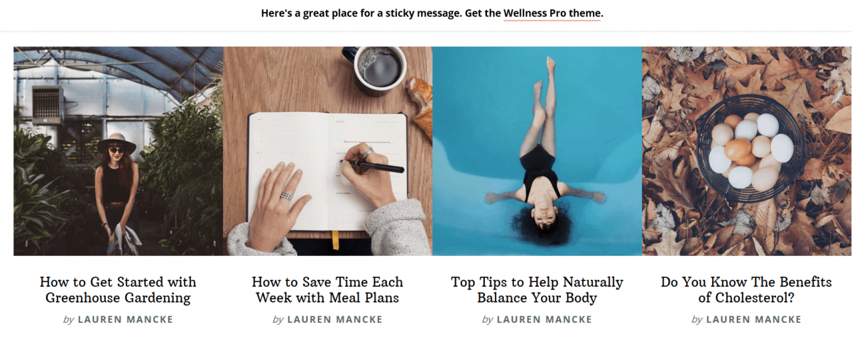 Wellness Pro Books