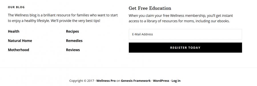 Wellness Pro Footer Widget