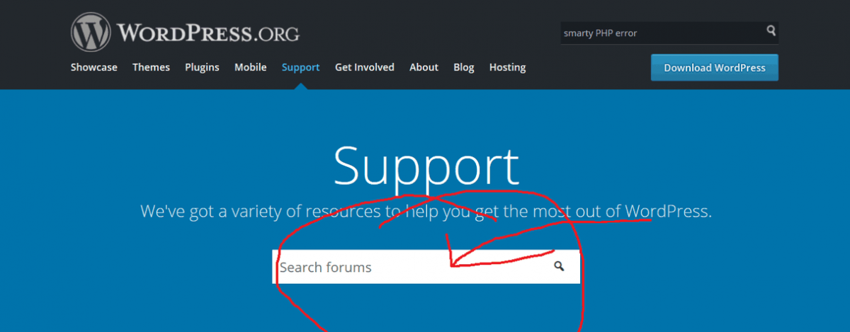 WordPress Search