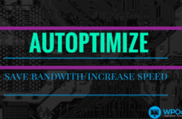 Help Save On Bandwidth With The Autoptimize Plugin
