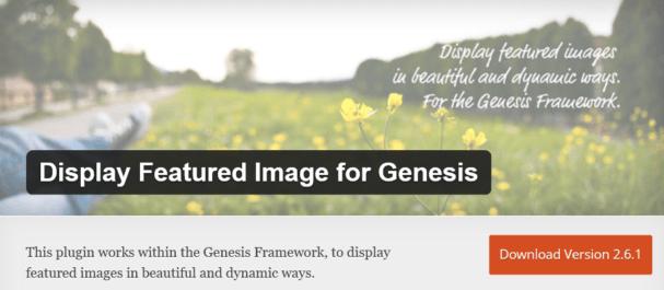 display image genesis