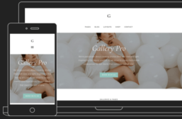 Gallery Pro – 3rd Party Genesis Framework Theme