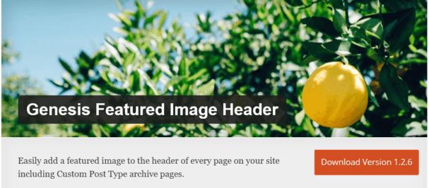 genesis image header