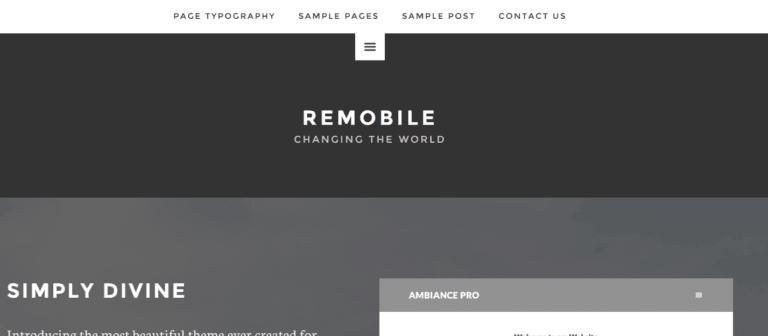 remobile pro theme example